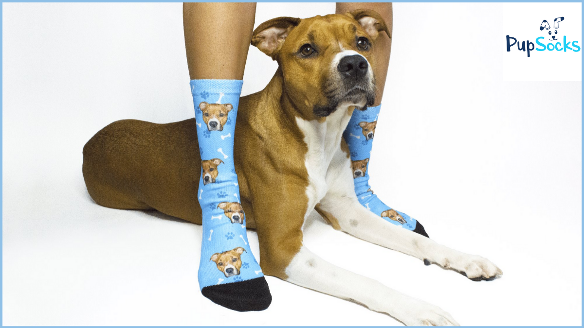 PupSocks Coupon Codes (Verified 25% OFF Discount Code)
