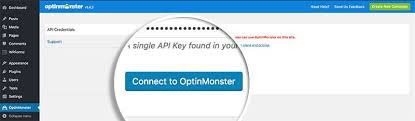 connect to optinmonster with license key