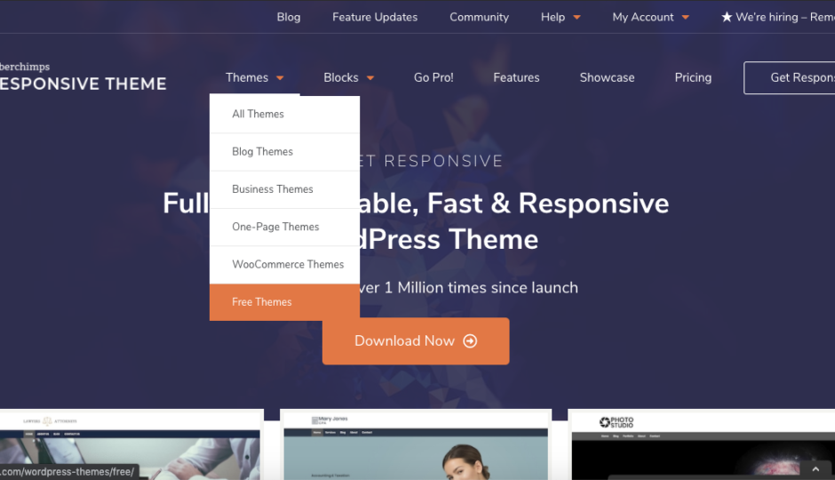 cyberchimps responsive theme for wordpress