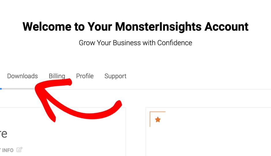 download-monsterinsights-plugin