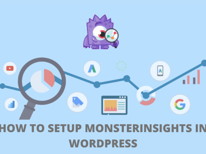 how to set up monsterInsights in wordpress