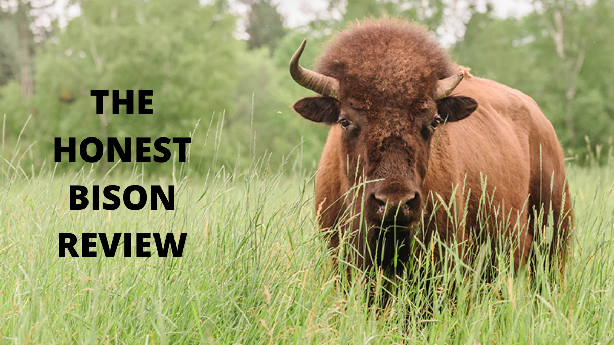 The Honest Bison Review (Best Grass Fed Bison Meats)