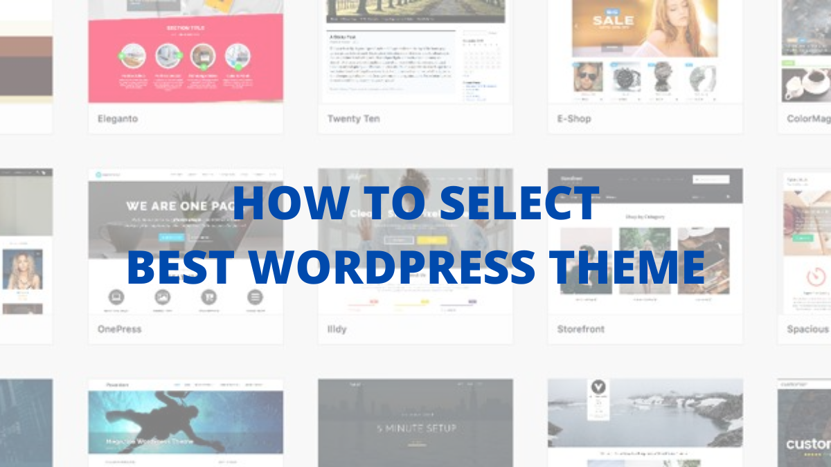How to Select The Best WordPress Theme? [8-Step Checklist]