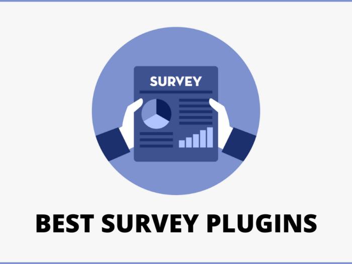 best survey plugins