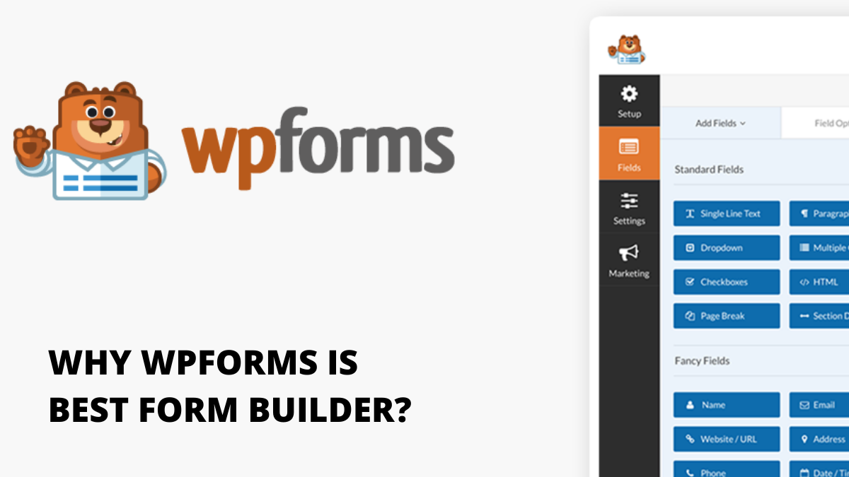 WPForms Review 2020: (5 Reasons to Buy The Best Form Builder)