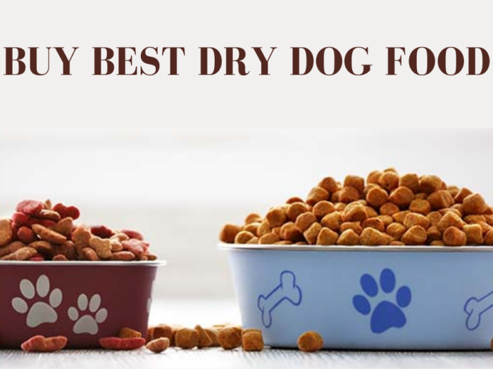 how to buy best dry dog food
