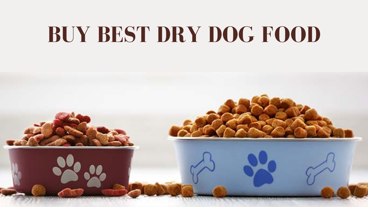 How to Buy Best Dry Dog Food? (7 Pro Tips For Healthy Pet)