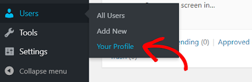 profile setting in wordpress for profile security