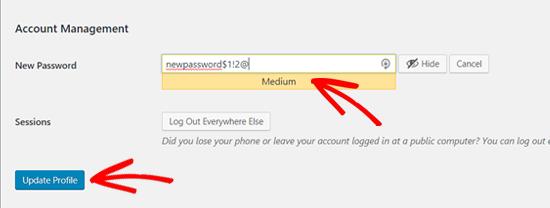 update new wordpress profile password
