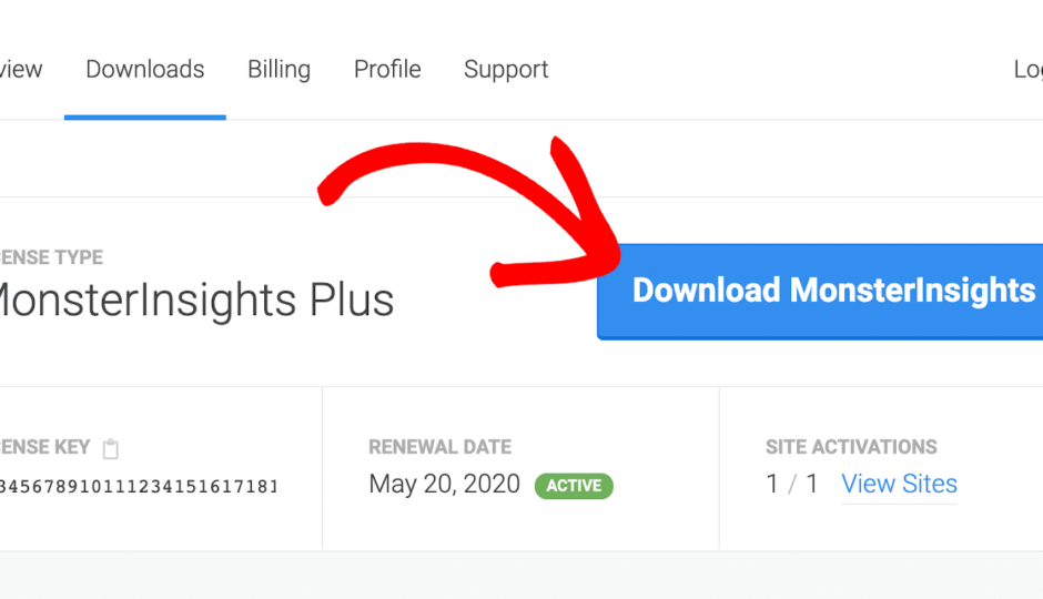 monsterinsights download from website