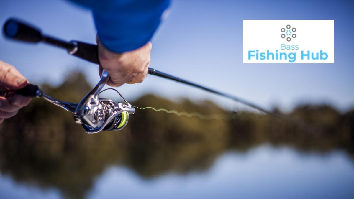 Bass Fishing Hub Discount Code (10% OFF Coupon Codes)
