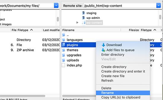 delete wordpress plugins through ftp client