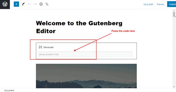 apply shortcode on shortcode block editor