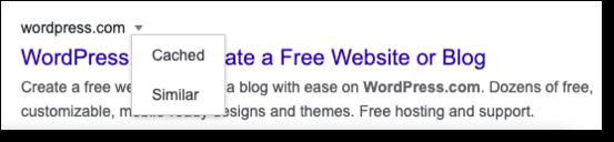 locate google cache